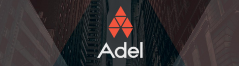 Adel: Investor perspective